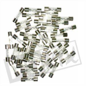 4.-ZEKERINGEN-GLAS-10ampere-25mm-100